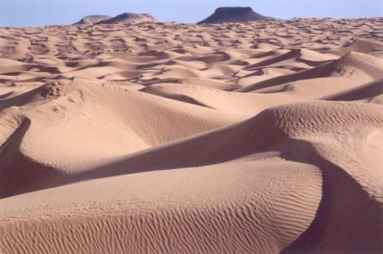Stages désert tunisien