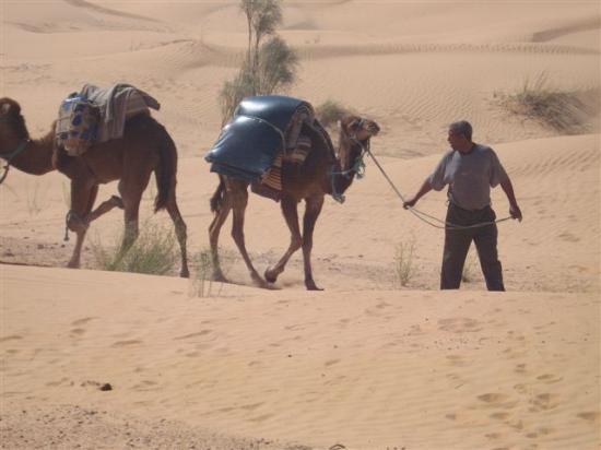 stage desert tunisien