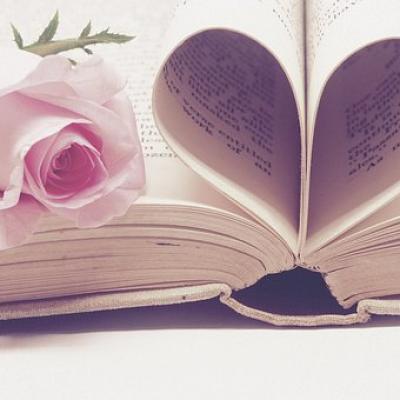 Literature 3060241 340
